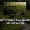 God's Protection From Parasites